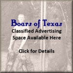 Advertise on Boars of Texas